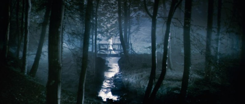 un-immagine-del-film-antichrist